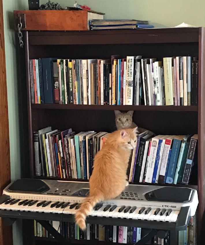 Poe and Pepper, Music and Poetry